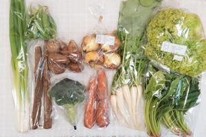 4月9日の無施肥無農薬栽培と自然栽培の定期宅配Mセット/大根葉(中抜き葉)、新玉ねぎ、九条細ネギ、里芋、ゴボウ、ニンジン、ブロッコリー、リーフレタス、ほうれん草、スナップエンドウ