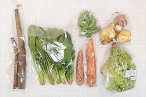 4月9日の無施肥無農薬栽培と自然栽培の定期宅配Sセット/新玉ねぎ、ゴボウ、ニンジン、リーフレタス、ほうれん草、スナップエンドウ