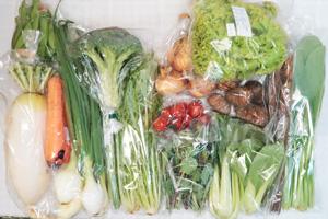 4月12日の無施肥無農薬栽培と自然栽培の定期宅配Lセット/大根、新玉ねぎ、葉玉ねぎ、里芋、ゴボウ、ニンジン、ブロッコリー、リーフレタス、小松菜、水菜、青梗菜(チンゲン菜)、のらぼう菜、絹さや、アスパラ、ミニトマト