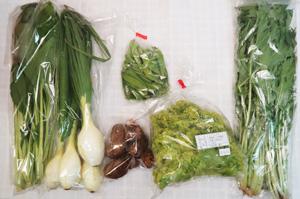 4月12日の無施肥無農薬栽培と自然栽培の定期宅配Sセット/葉玉ねぎ、里芋、リーフレタス、小松菜、水菜、絹さや