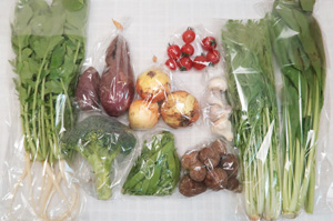 4月16日の無施肥無農薬栽培と自然栽培の野菜の定期宅配セット