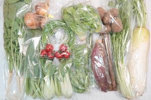 4月19日の無施肥無農薬栽培と自然栽培の定期宅配Lセット/大根、大根葉(中抜き葉)、新玉ねぎ、里芋、サツマイモ、ゴボウ、レタス、小松菜、水菜、青梗菜(チンゲン菜)、ニンニクの芽、絹さや、スナップエンドウ、アスパラ、ミニトマト