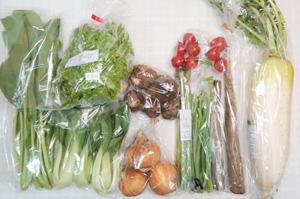 4月19日の無施肥無農薬栽培と自然栽培の定期宅配Mセット/大根、新玉ねぎ、里芋、ゴボウ、サンチュ、小松菜、青梗菜(チンゲン菜)、ニンニクの芽、アスパラ、ミニトマト