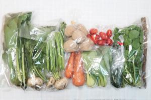6月7日の無施肥無農薬栽培と自然栽培の定期宅配Mセット/ジャガイモ(花標津)、ニンジン、ゴボウ、ズッキーニ、小カブ、インゲン、小松菜、青梗菜(チンゲン菜)、ルッコラ、ミニトマト
