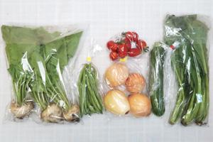 6月7日の無施肥無農薬栽培と自然栽培の定期宅配Sセット/玉ねぎ、ズッキーニ、小カブ、インゲン、小松菜、ミニトマト