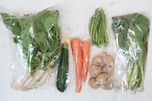 6月11日の無施肥無農薬栽培と自然栽培の定期宅配Sセット/玉ねぎ、ジャガイモ(花標津)、ニンジン、ズッキーニ、絹さや、スイスチャード