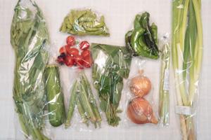 7月19日の無施肥無農薬栽培と自然栽培の野菜の定期宅配セット