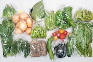8月6日の無施肥無農薬栽培と自然栽培の定期宅配Lセット/玉ねぎ、ジャガイモ(メークイン)、ゴーヤ、ズッキーニ、キュウリ、茄子、ピーマン、ししとう、モロッコインゲン、枝豆、オクラ、エンサイ(空心菜)、ツルムラサキ、ミニトマト、大葉