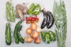 8月6日の無施肥無農薬栽培と自然栽培の定期宅配Mセット/玉ねぎ、ジャガイモ(メークイン)、ズッキーニ、キュウリ、茄子、ピーマン、万願寺とうがらし、インゲン、エンサイ(空心菜)、ミニトマト