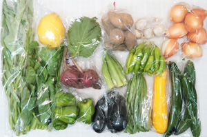 8月9日の無施肥無農薬栽培と自然栽培の定期宅配Lセット/玉ねぎ、ジャガイモ(メークイン)、赤かぶ、ズッキーニ、キュウリ、茄子、ピーマン、ししとう、インゲン、オクラ、エンサイ(空心菜)、ツルムラサキ、大葉、レモン、ニンニク