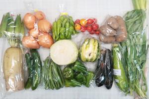8月13日の無施肥無農薬栽培と自然栽培の定期宅配Lセット/大根、玉ねぎ、ジャガイモ(メークイン)、キャベツ、タイガーメロン、ズッキーニ、キュウリ、茄子、ピーマン、ししとう、インゲン、オクラ、エンサイ(空心菜)、ミニトマト、長ネギ