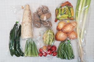 8月13日の無施肥無農薬栽培と自然栽培の定期宅配Mセット/大根、玉ねぎ、ジャガイモ(メークイン)、タイガーメロン、キュウリ、ししとう、インゲン、オクラ、ミニトマト、長ネギ