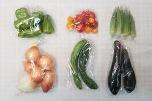 8月13日の無施肥無農薬栽培と自然栽培の定期宅配Sセット/玉ねぎ、キュウリ、茄子、ピーマン、オクラ、ミニトマト