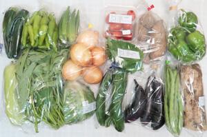8月16日の無施肥無農薬栽培と自然栽培の定期宅配Lセット/大根、キャベツ、玉ねぎ、ジャガイモ(メークイン)、絹ウリ、ズッキーニ、キュウリ、茄子、ピーマン、ししとう、インゲン、オクラ、エンサイ(空心菜)、ミニトマト、大葉