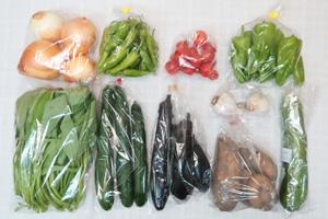 8月16日の無施肥無農薬栽培と自然栽培の定期宅配Mセット/玉ねぎ、ジャガイモ(メークイン)、ズッキーニ、キュウリ、茄子、ピーマン、ししとう、エンサイ(空心菜)、ミニトマト、ニンニク