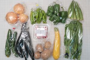 8月20日の無施肥無農薬栽培と自然栽培の野菜の定期宅配セット