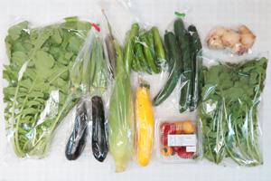 9月20日の無施肥無農薬栽培と自然栽培の野菜の定期宅配セット