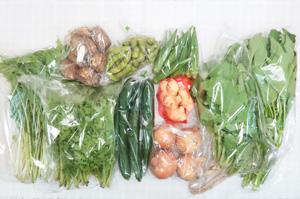 10月4日の無施肥無農薬栽培と自然栽培の定期宅配Mセット/玉ねぎ、里芋、キュウリ、枝豆、オクラ、大根葉(中抜き葉)、わさび菜、サラダ水菜、エンサイ(空心菜)、新生姜