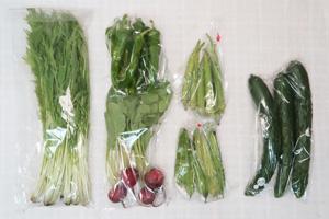 10月8日の無施肥無農薬栽培と自然栽培の定期宅配Sセット/キュウリ、万願寺とうがらし、シカクマメ、オクラ、ラディッシュ、水菜