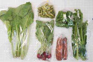 10月11日の無施肥無農薬栽培と自然栽培の定期宅配Sセット/ニンジン、ピーマン、枝豆、ラディッシュ、野沢菜、ツルムラサキ