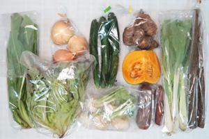 11月12日の無施肥無農薬栽培と自然栽培の野菜の定期宅配セット