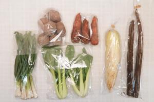 1月14日の無施肥無農薬栽培と自然栽培の定期宅配Sセット/大根、ジャガイモ(さやあかね)、ニンジン、ゴボウ、青梗菜(チンゲン菜)、ニンニクの葉