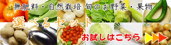 無肥料・自然栽培旬のお野菜・果物の選べるセットのお試し購入