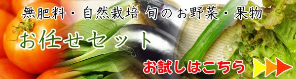無肥料・自然栽培旬のお野菜・果物のお任セットのお試し購入