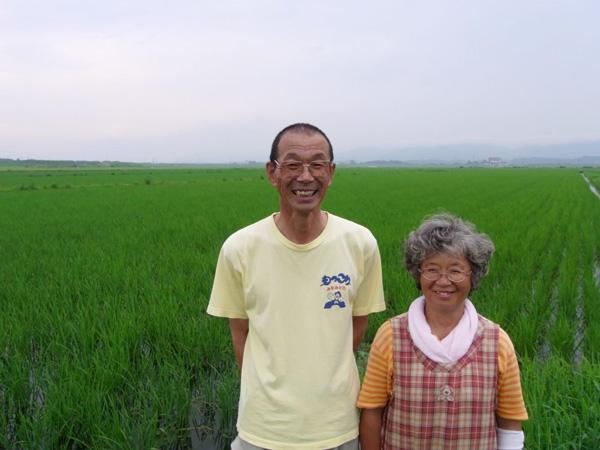 無肥料・自然栽培成澤さんのササニシキ成澤さんご夫婦