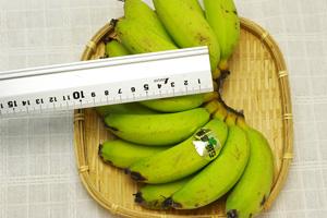 自然栽培ミニバナナ